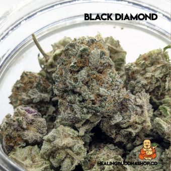 black Diamond - Healingbuddhashop.co