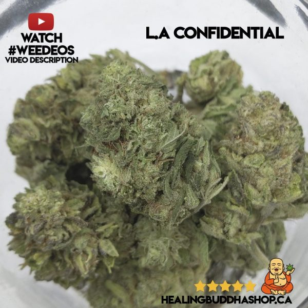buy L.A confidential strain online healing buddha shop