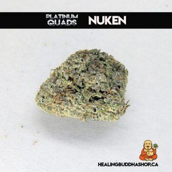 buy nuken strain online healing buddha shop