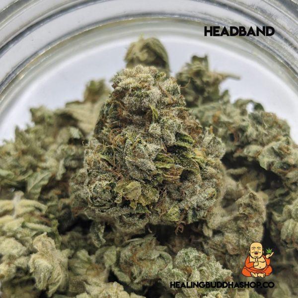 HeadBand - HealingBuddhaShop.co