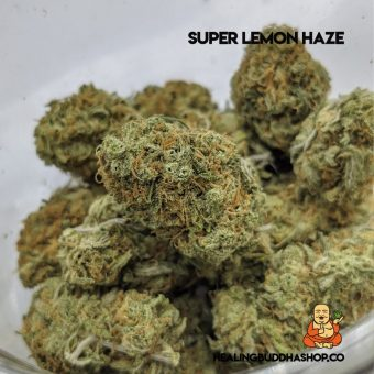 super lemon haze AAA - healingbuddhashop.co