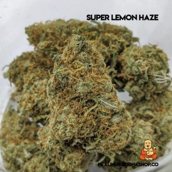 super lemon haze - healingbuddhashop.co