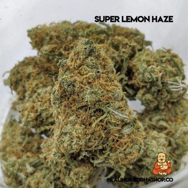super lemon haze - healingbuddhashop.co