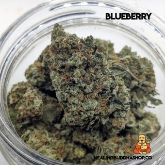 Blueberry - healingbuddhashop.co