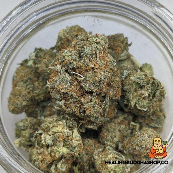 sour diesel - healingbuddhashop.co