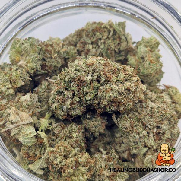 White Berry - Healingbuddhashop.co